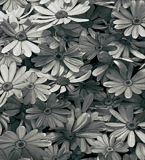 çiçekli üç boyutlu halı