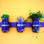 kavanozdan evinize dekoratif süsleme fikirleri - duvara kavanozdan bitki saksi 150x150