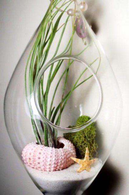 deniz-kabugundan-sus-esyasi-yapma deniz kabuğundan süsler - decorating with sea urchins ideas - Deniz Kabuklarıyla Dekoratif Süsler Oluşturma Fikirleri
