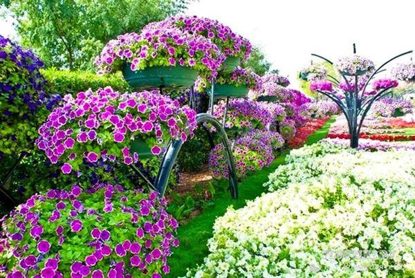 Bahçe Peysajı İçin Kullanabileceğiniz Bitkiler 1