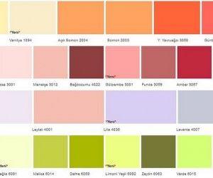 Filli Boya Alpina Silikonlu İç Duvar Boya Renkleri
