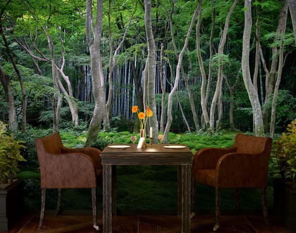 orman resimli duvar kağıt