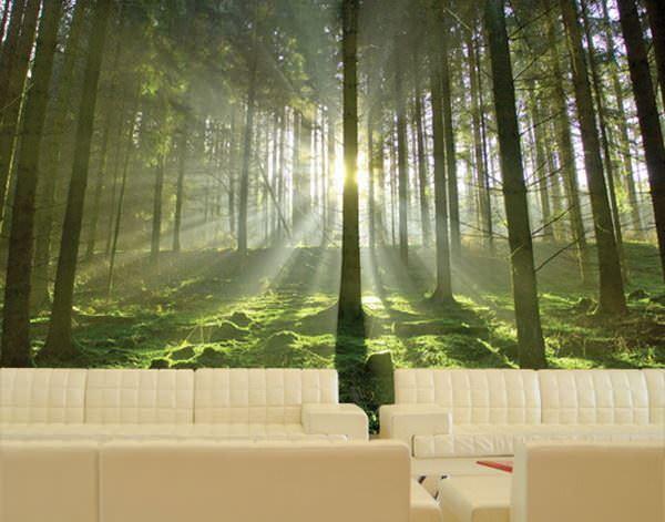 ağaç resimli duvar kağıtları