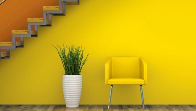 Duvar Boya Renk Seçimleri