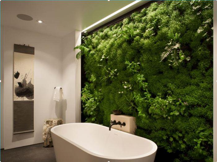 Duvarlar İçin Dikey Yeşillik Peysajı