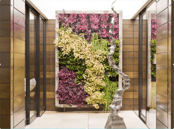 Duvarlar İçin Dikey Yeşillik Peysajı duvarlar İçin dikey yeşillik peysajı - color living manhattan beacj min - Duvarlar İçin Dikey Yeşillik Peysajı
