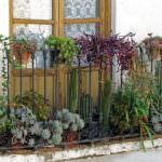 balkon demiri çiçeklik küçük balkonlar İçin güzel dekorasyon fikirleri - kucuk balkon guzel dekorasyon fikirleri 12 150x150