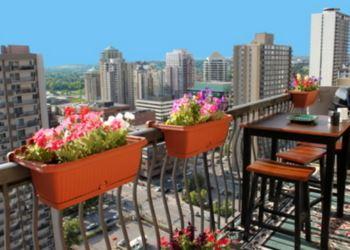 balkon çiçeklikleri