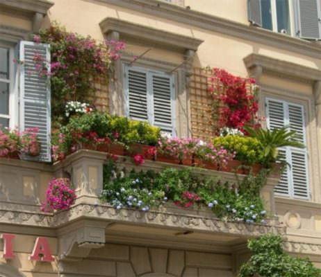 balkon renkli çiçekler