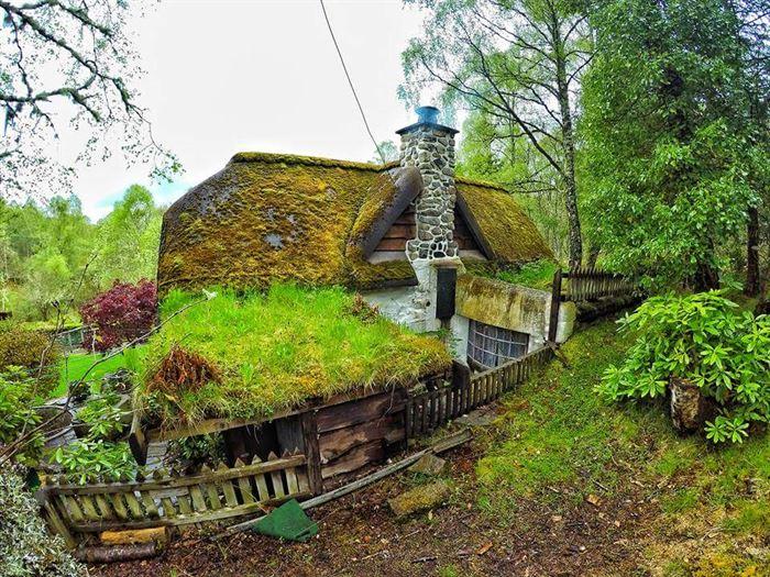İlginç Doğal Ahşap Tasarımlı Hobbit Tarzı Ev 4
