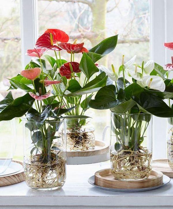 Cam vazo modelleri
