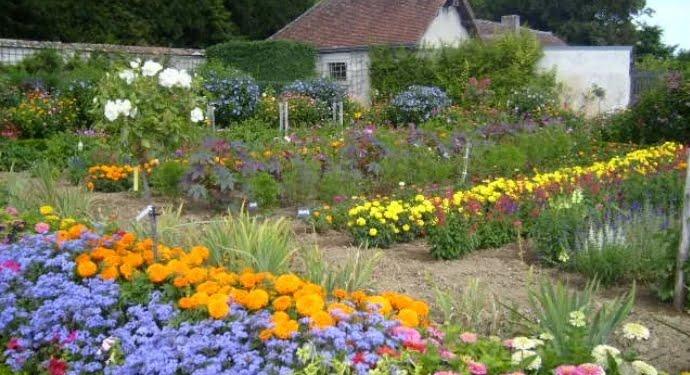 çiçek yetiştirme mevsimleri