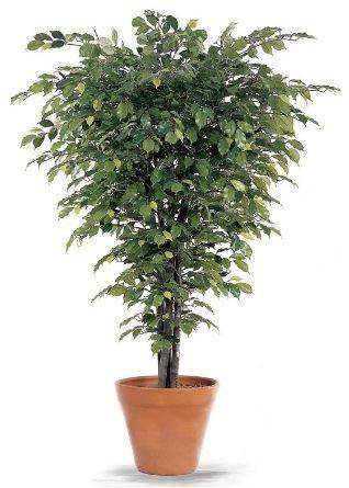 Yapay Çiçeklerle Yeşil Dünya Yaratın 6