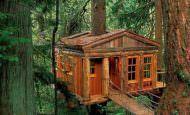 Ağaç Üstüne Ahşap Ev Tasarımı