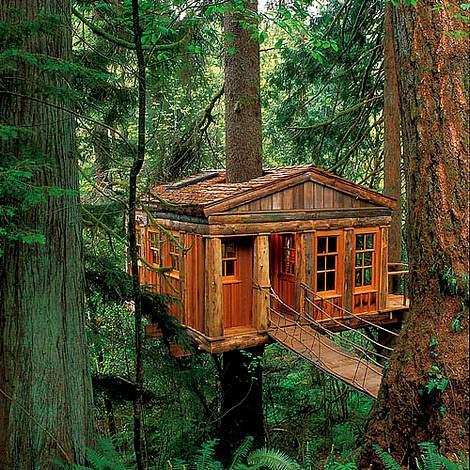 Ağaç Üstüne Ahşap Ev Tasarımı 2