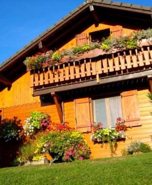 ağaç evler tatil