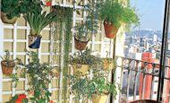 Dekoratif Bahçe Ve Balkon Çiçeklik Fikirleri