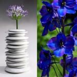 dekoratif vazo ve saksı modelleri - cicek kaplari1 150x150 - Dekoratif Vazo Ve Saksı Modelleri