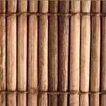 dinarsu-bambu-deseni