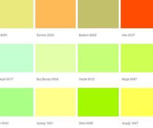 Fawori Duvar Boya Renkleri