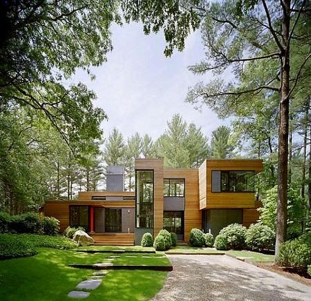 Doğal Ağaçlar Arasında Modern Ev Tasarımı 1