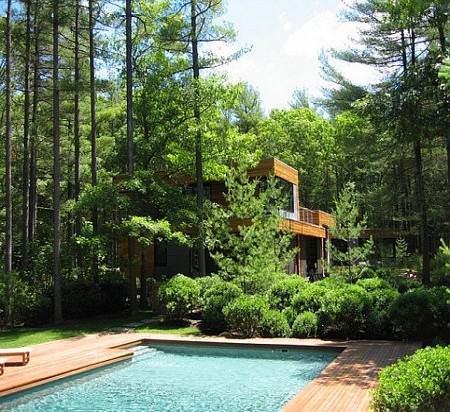 Doğal Ağaçlar Arasında Modern Ev Tasarımı 2