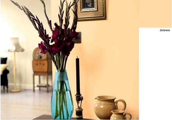 sampanya-rengi marshall boya renkleri - sampanya rengi - Marshall Boya Yeni Sezon Boya Renkleri