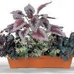 yapay Çiçeklerle yeşil dünya yaratın - yesillik 150x150 - Yapay Çiçeklerle Yeşil Dünya Yaratın