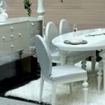 dekoratif yemek odası zebrano mobilya yemek odası modelleri